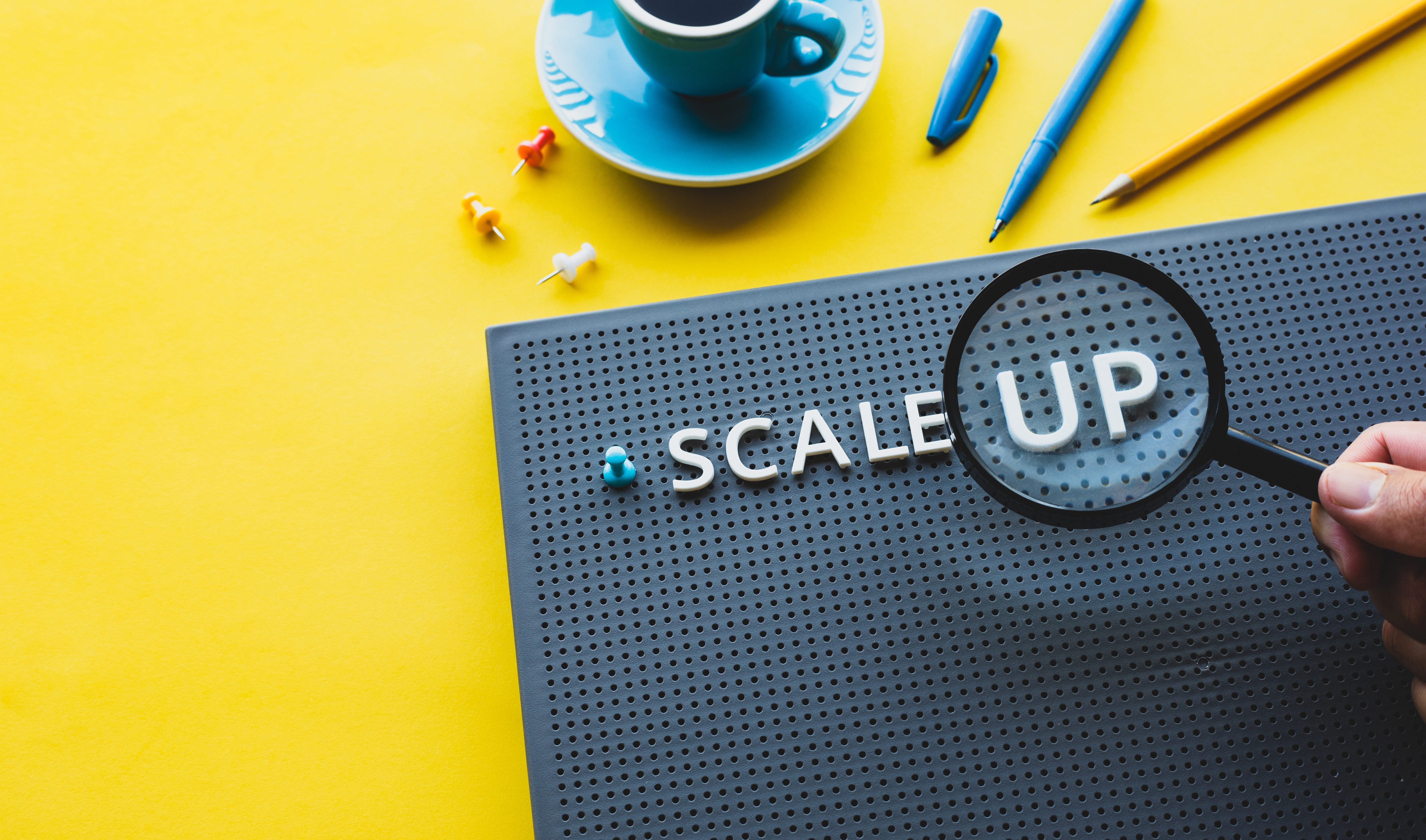 Scale Up board